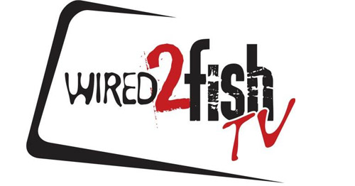 Wired 2 Fish